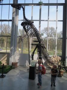 Museumbezoek Oertijdmuseum Krokusvakantie