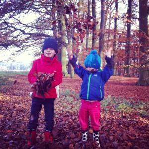 De leukste bossen met kinderen